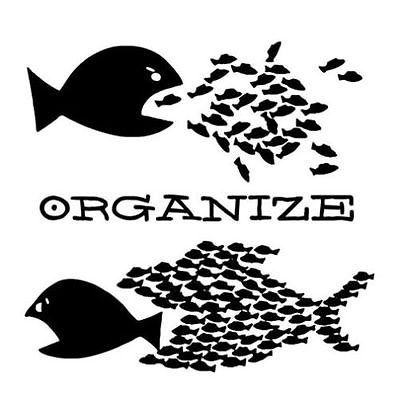 organize3